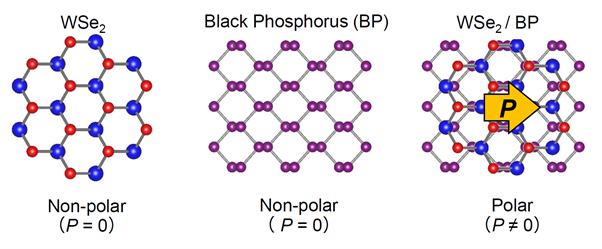 POLARIZED PHOTOVOLTAIC PROPERTIES EMERGED IN 2D-MATERIALS